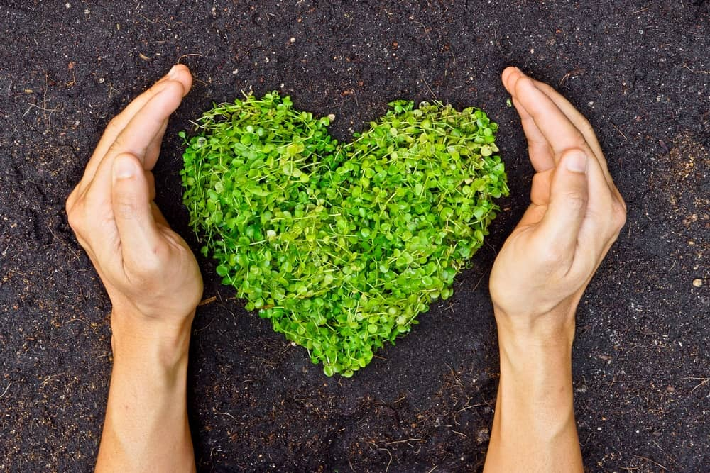 Going eco-friendly has so many more benefits than simply cost-saving.